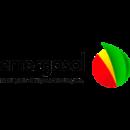 emergosol_logo_2_